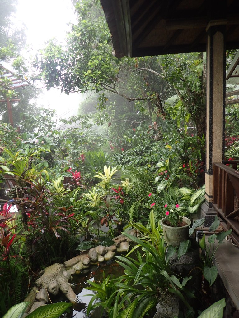 Gardens of the Coffee Plantation and Civet Sanctuary